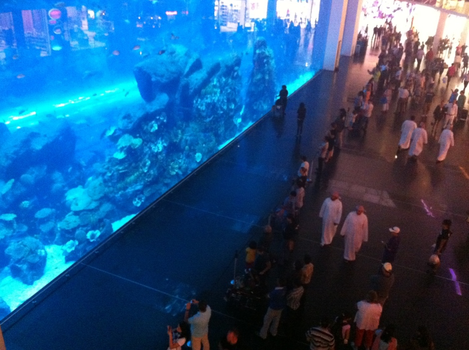 Aquarium in the mall (sharks & all).